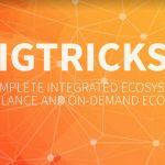 GigTricks — Обзор ICO